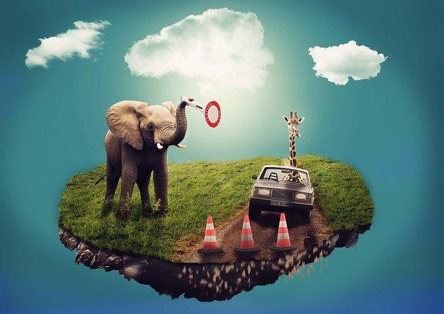 купи слона продажі стратегії