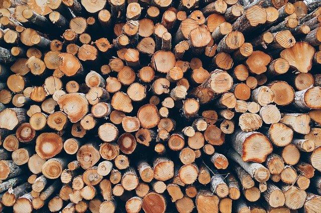 дрова ресурс запас